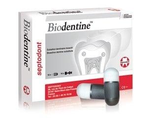 Биодентин