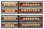Двуслойни зъбни гарнитури